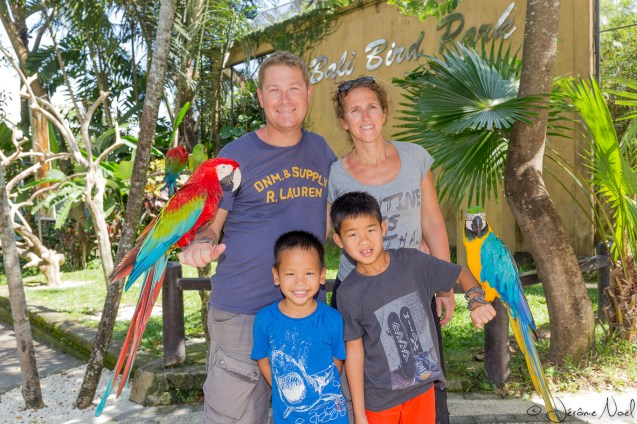 Bali Bird Park - Famille & perroquets