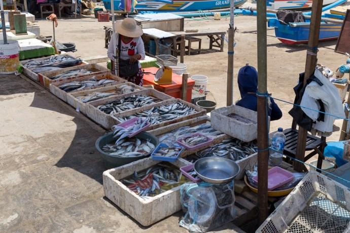 Jimbaran Fish Market - à la sortie des bateaux