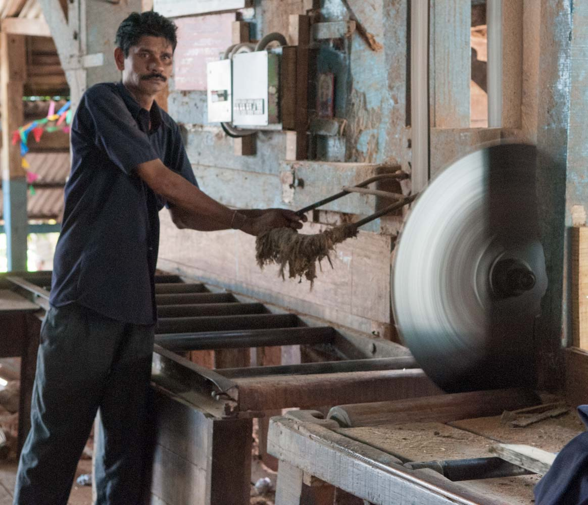 Chatham Saw Mill, Port-Blair, Iles Andaman, Inde