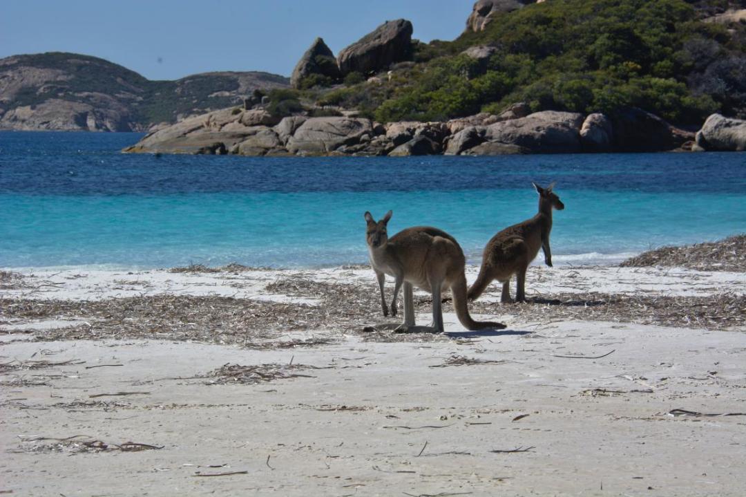 vie de reve en Australie
