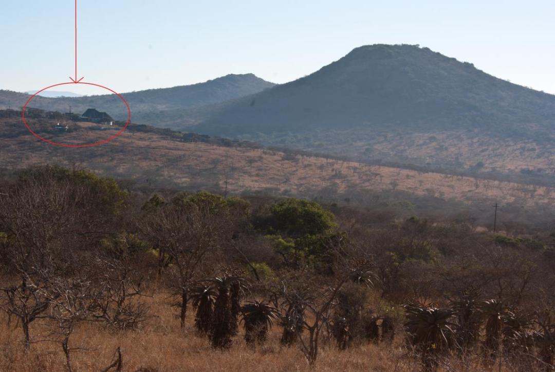 Volontariat international à Thanda Reserve