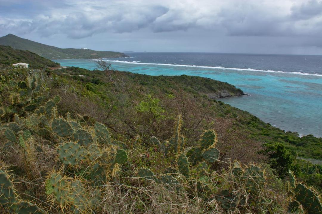 Paysage des Grenadines lors d'une randonnée