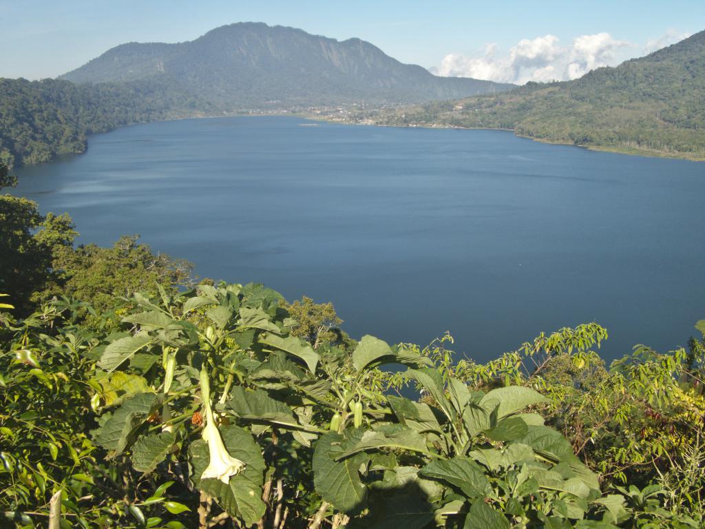 lac à bali au nord d'ubud en indonésie