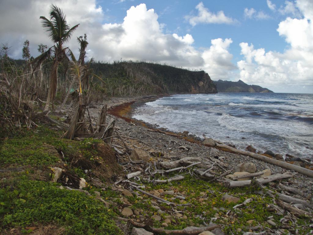 une plage de l'ile de la dominique dans les caraibes