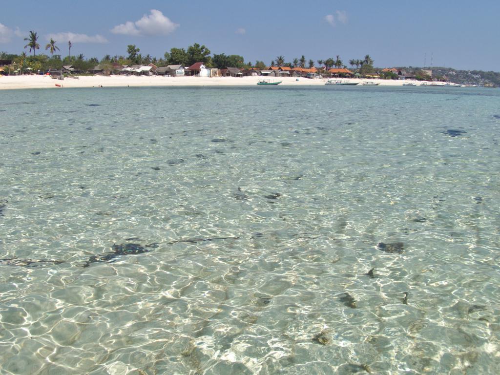une plage de sable blanc à nusa lembongan en indonésie