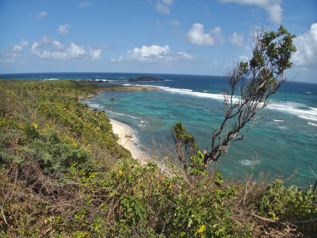 Trace des Caps en Martinique dans les Caraïbes