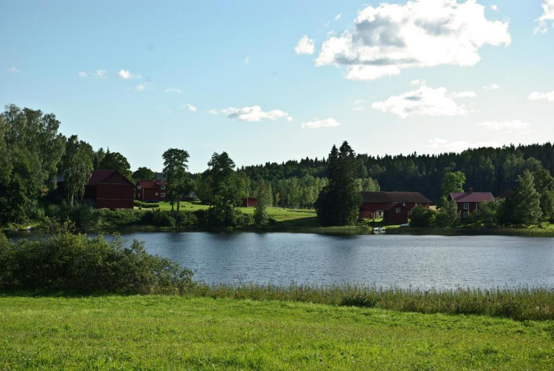 les maisons suédoises dans les environs de l'hébergement insolite
