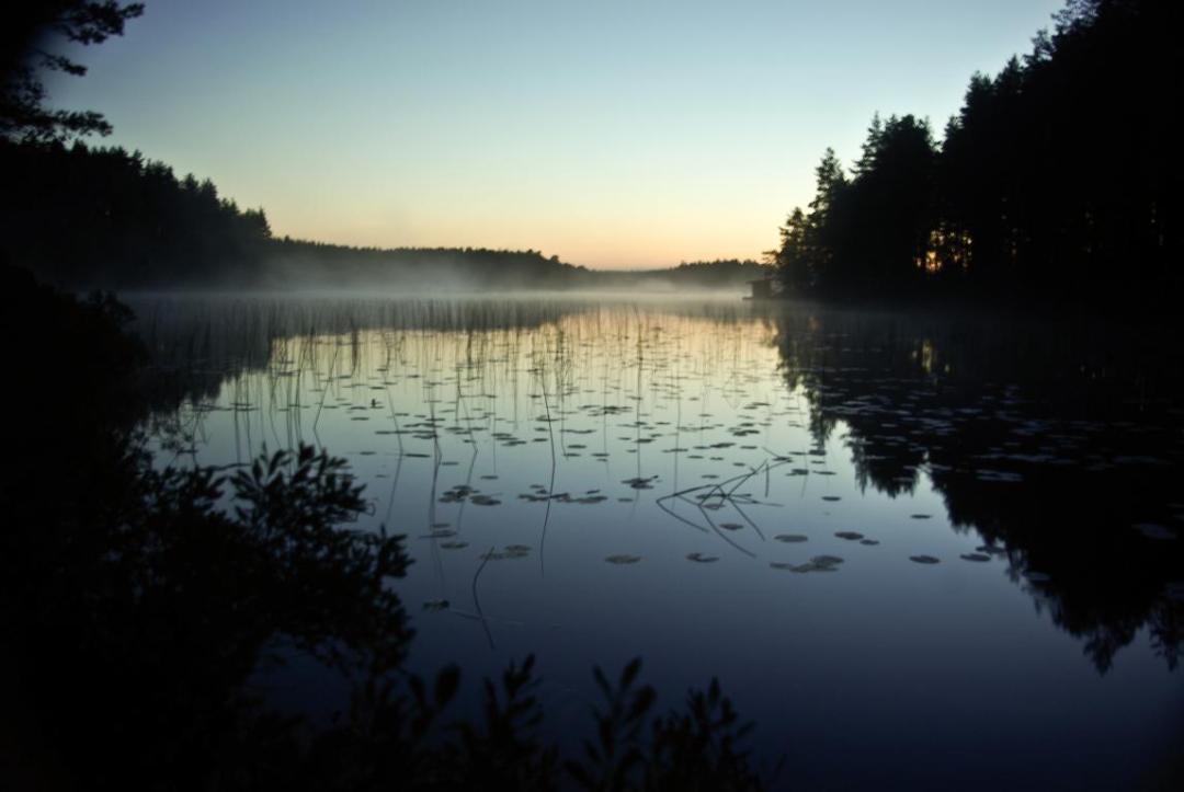 lever du jour et brumes sur le lac à proximité de l'hébergement insolite