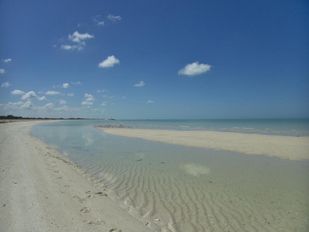 celestun plage sauvage yucatan