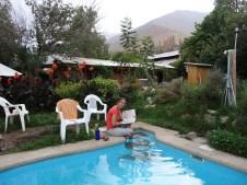 En la piscina-vergel del hostal