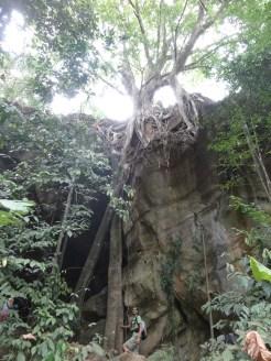 Paseo selvático en Koh Lanta