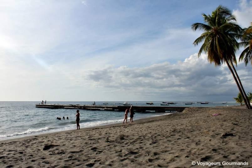Plage de Martinique (23)