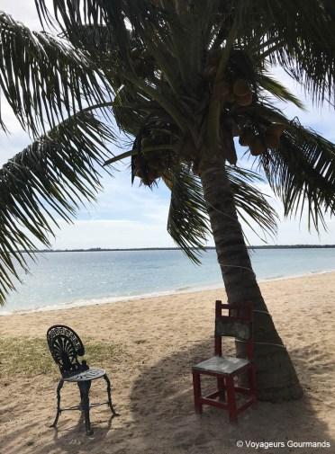 visiter playa larga