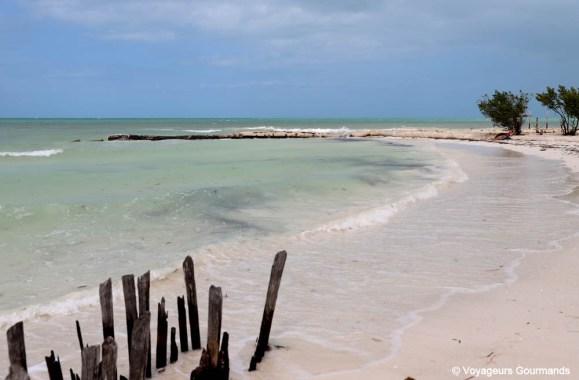 road trip dans le Yucatan (47)