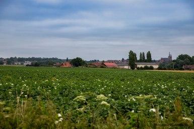 vallee de la Lys et les Monts de Flandre (40)
