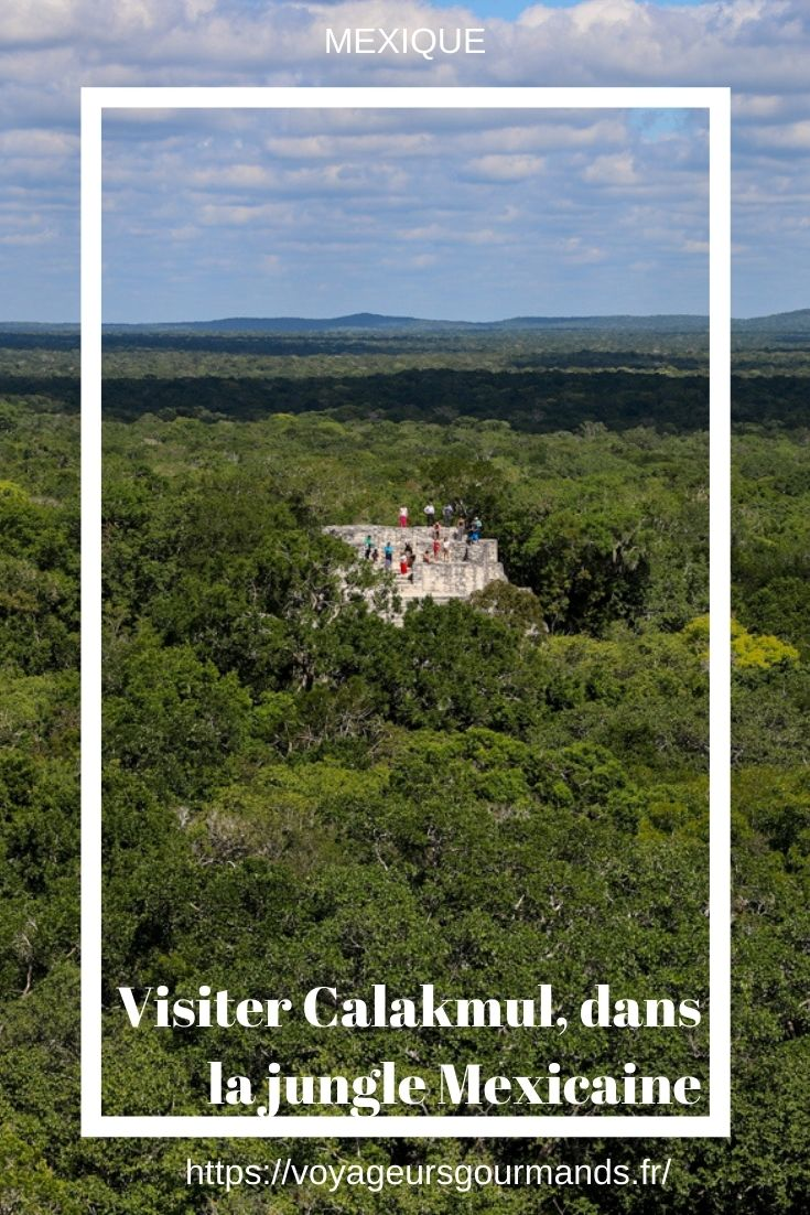 Visiter Calakmul belvedere