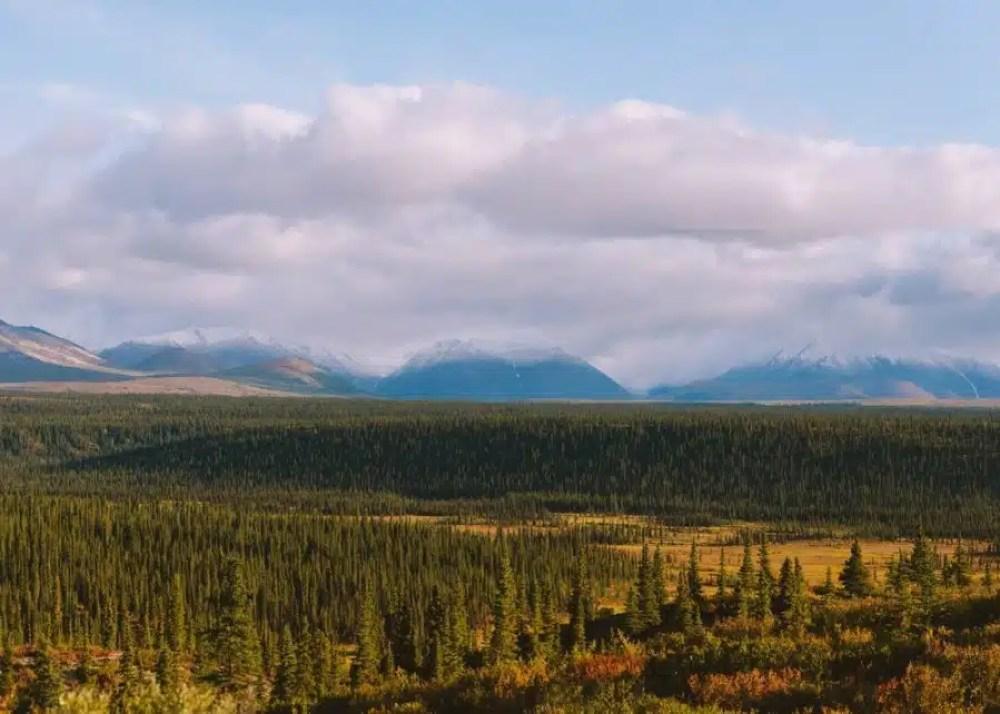 Planning a trip to Alaska