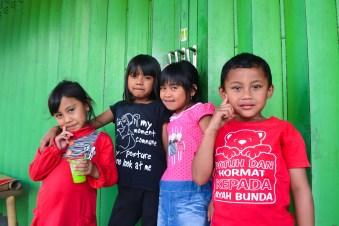 Ile de Java, Indonésie