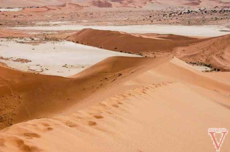 Namib Desert-11-2