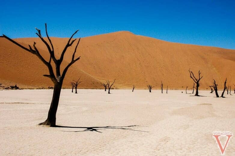 Au pied de big Daddy, Deadvlei
