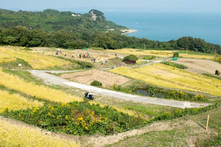 teshima japon shikoku