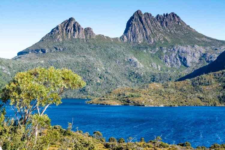 cradle mountain tasmanie