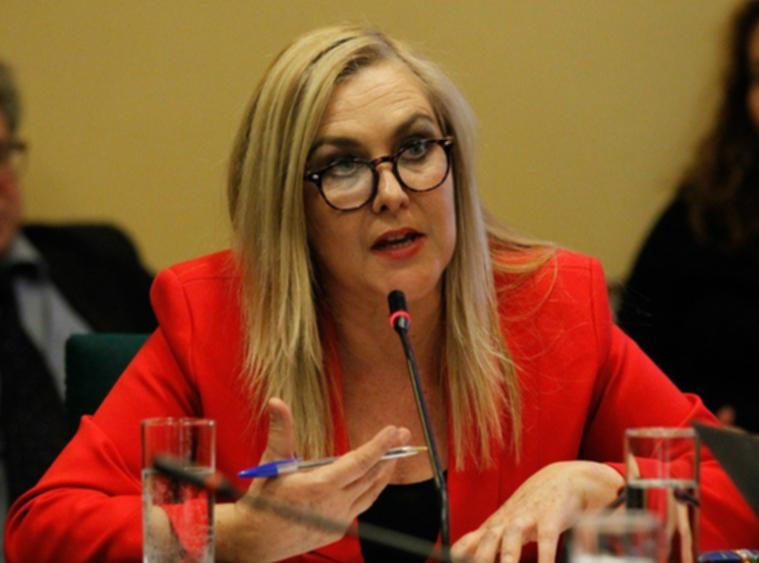 Diputada Pamela Jiles por Salario Mínimo: Los trabajadores de Chile para el Gobierno valen una luca»