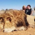 Una pareja de cazadores fotografiada besándose tras matar a un león indefenso causa indignación entre conservacionistas