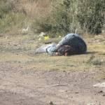 Abandonan cuerpo de mujer en Fresnillo