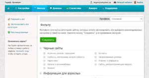 Интерфейс SkyDNS
