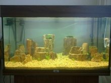 Камни для аквариума: виды, применение и уход kamni dlya akvariuma vidy vybor i primenenie 19 AquaDeco Shop