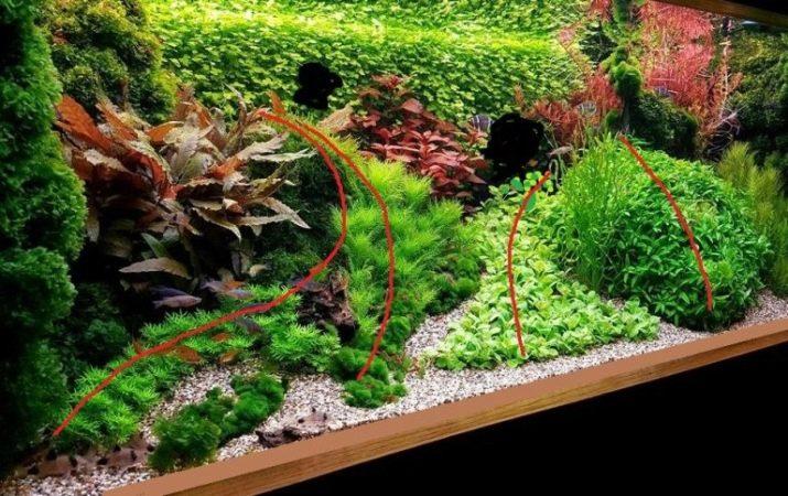 Камни для аквариума: виды, применение и уход kamni dlya akvariuma vidy vybor i primenenie 23 AquaDeco Shop