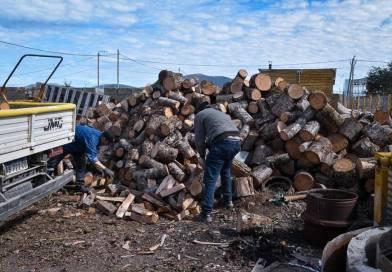 Tolhuin: desarrollo social del municipio continúa registrando a beneficiarios del servicio de leña