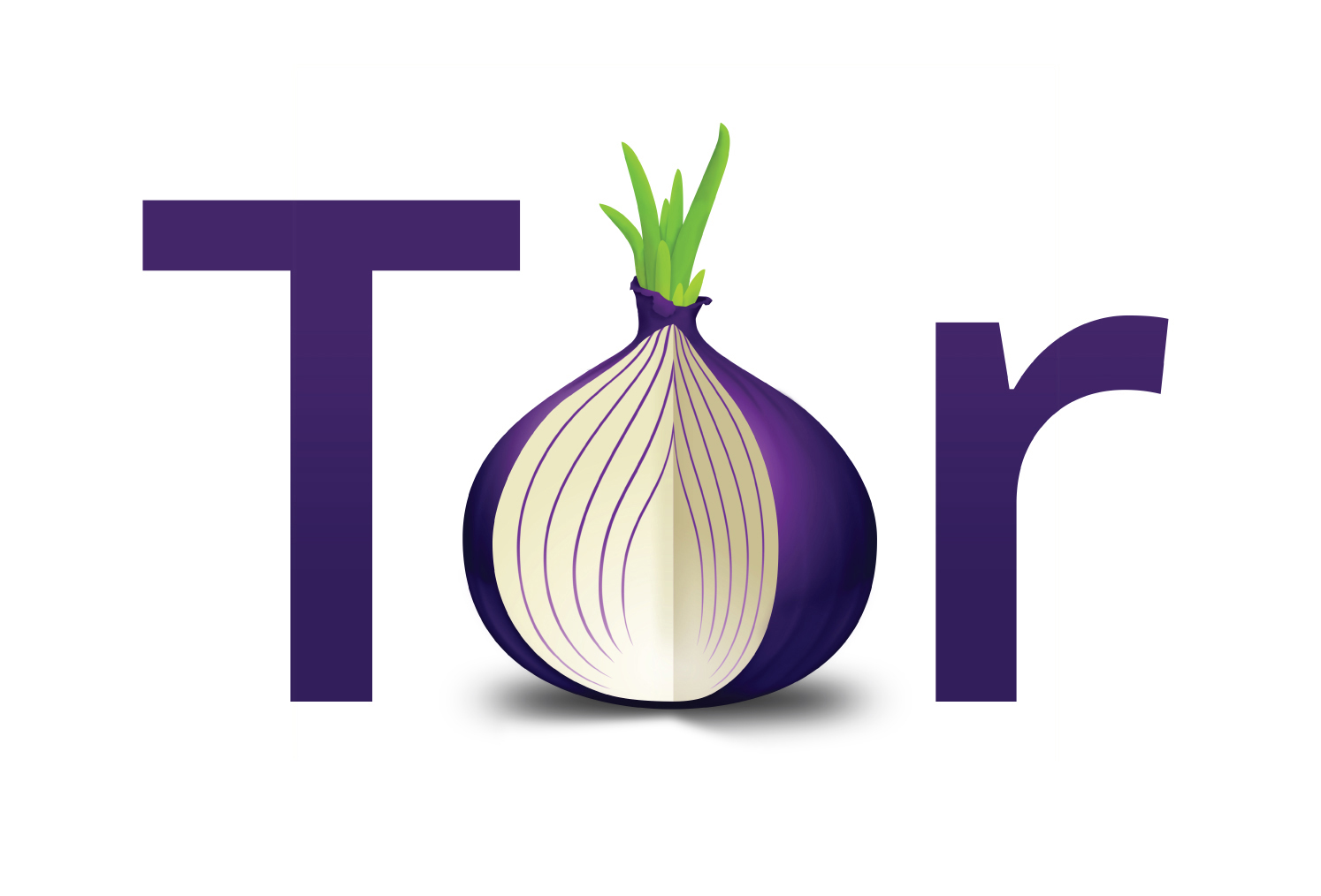 What Security Onion