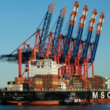 UAE bans MSC vessel for violating HFO carriage ban