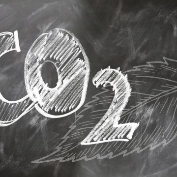Shipping CO2 emissions down 1 per cent in 2020