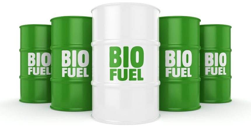 ABS publishes guidance on the use of biofuels in shipping