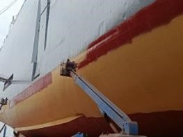 Nippon Paint's antifouling system chosen for pure car carrier