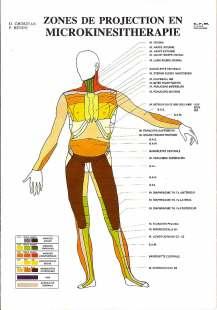 Microkinésitherapie Source google images