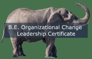 B.E. Organizational Change Leadership Certification