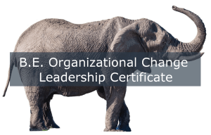 B.E. Organizational Change Leadership Certification