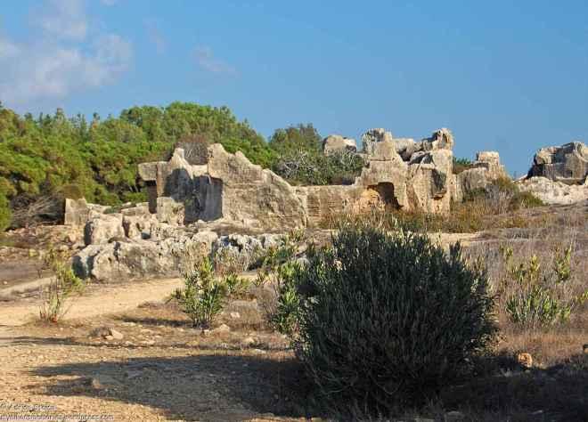 Tombs13