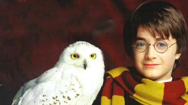 Harry-Potter-danas-napunio-20-godina-Harry Potter
