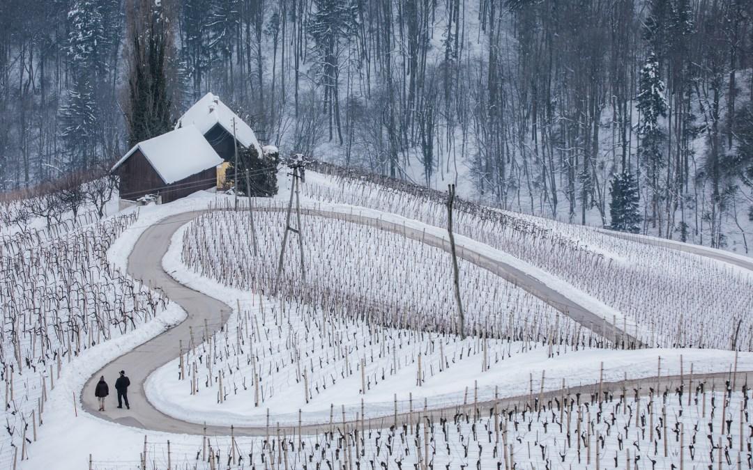 Razstava fotografij Slovenije / Fototentoonstelling over Slovenië