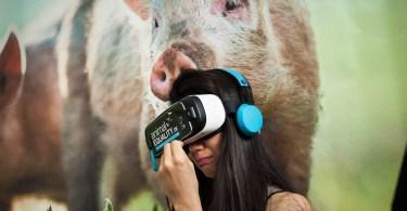 ianimal-vr-experience-pig-slaughterhouse