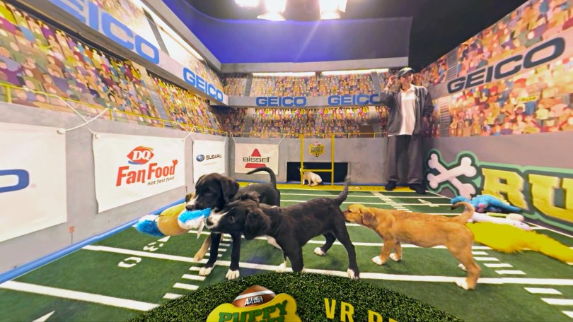 puppy-bowl-vr-discovery4
