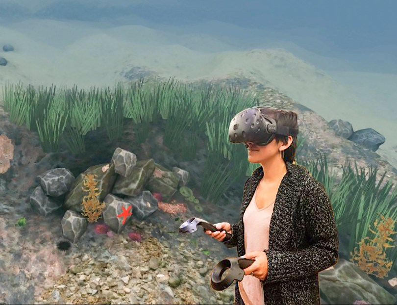 Stanford Virtual Reality Ocean