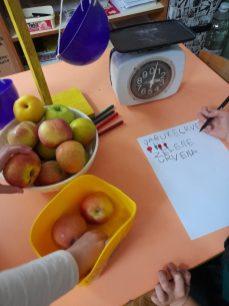 Dan jabuka u Šapicama