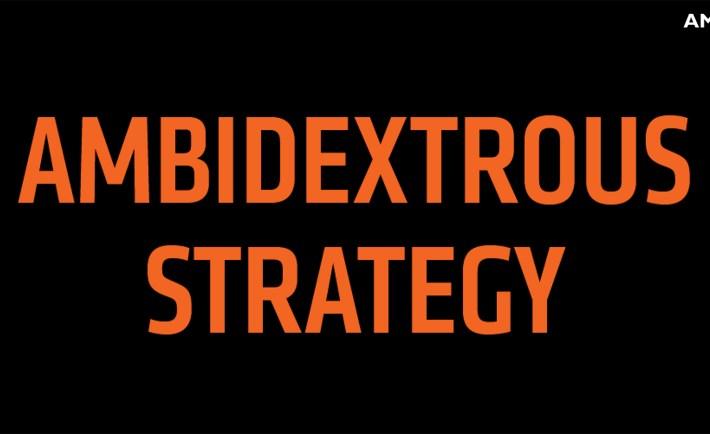 AMD Ambidextrous Strategy