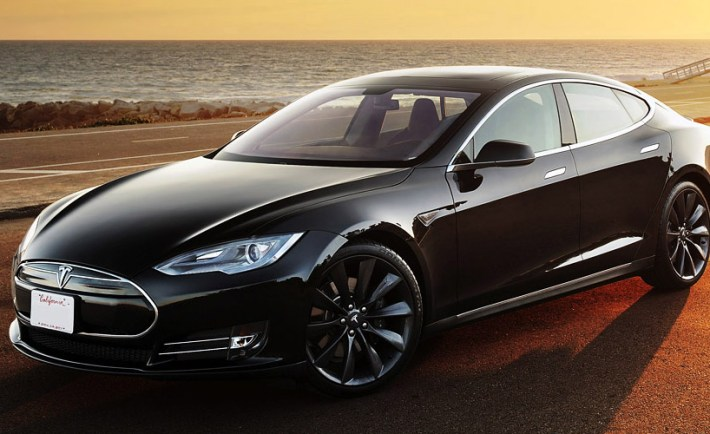 Tesla Model S Thee Dog Day News
